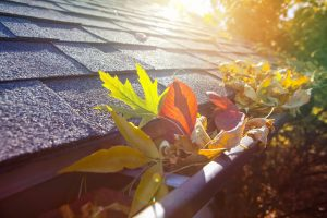 Keep your gutters free from debris and leaves to prevent water damage to your home | Gutter replacement and gutter repairs services from North Shore Home Works services Chicago, Northbrook, Highland Park, Lake Forest, Lake Bluff, Glenview, Kenilworth, Wilmette, Winnetka, and surrounding IL areas