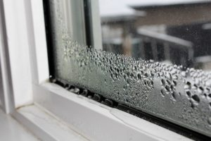 Check Windows For Condensation Mold and Rot North Shore Home Works services Chicago, Northbrook, Highland Park, Lake Forest, Lake Bluff, Glenview, Kenilworth, Wilmette, Winnetka, and surrounding IL areas